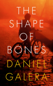 daniel-galera-the-shape-of-bones.png