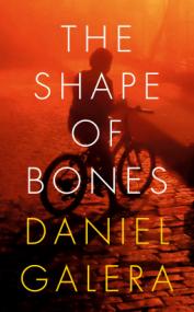 daniel-galera-the-shape-of-bones.png