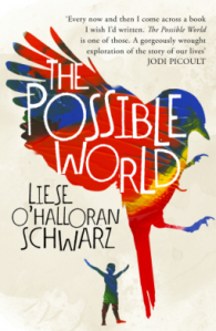 liese-ohalloran-schwarz-the-possible-world