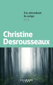 christine-desrousseaux-en-attendant-la-neige