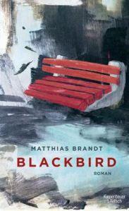matthias-brandt-blackbird
